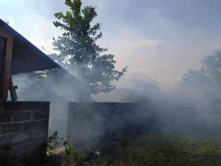 Kasus Demam Berdarah Dengue (DBD) muncul di Rt 05 dan Rt 04 Gersik Desa Sumbermulyo, Kecamatan Bamba